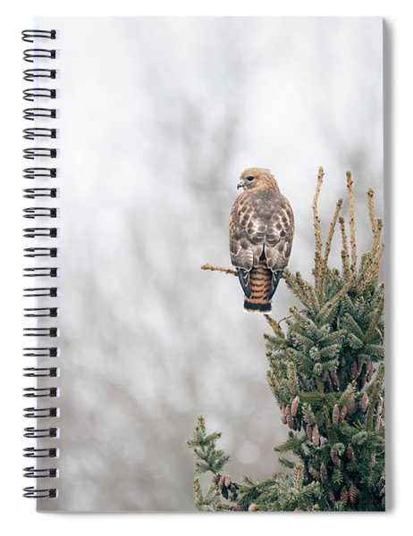 Hal Hanging Out Spiral Notebook