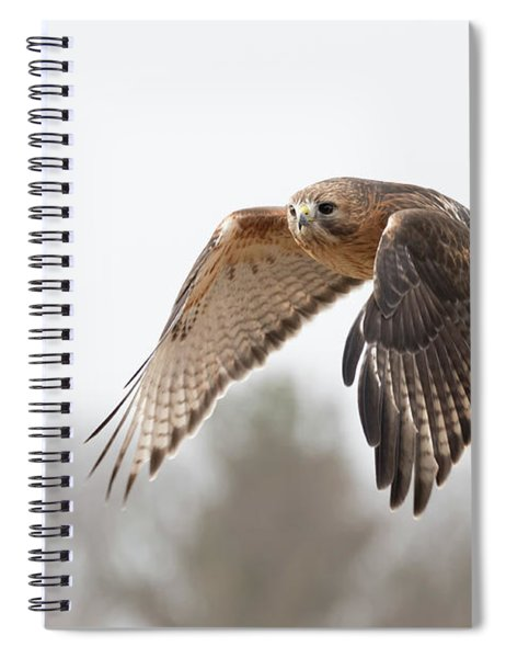 Hal Takes Flight Spiral Notebook