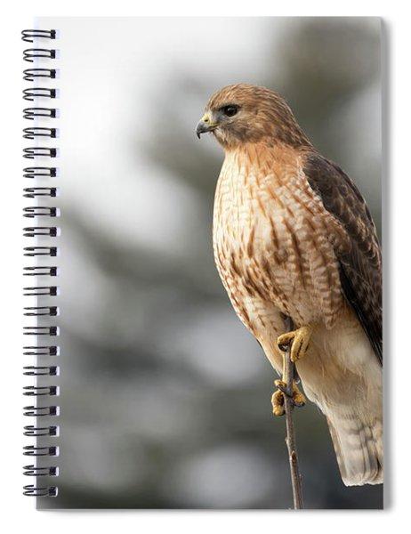 Hal The Hybrid Portrait 1 Spiral Notebook