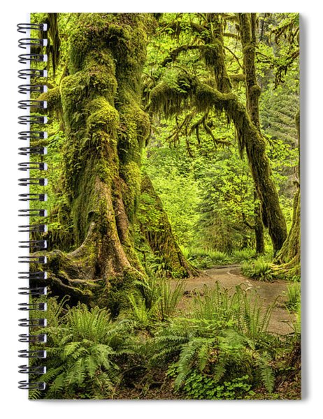 Hall Of Mosses - Olympic National Park Spiral Notebook