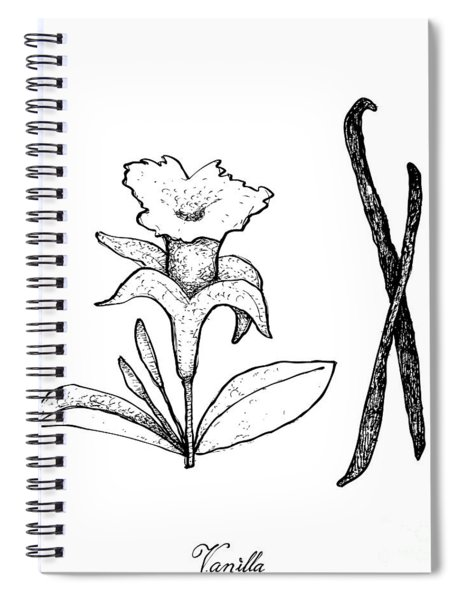 Hand Drawn Of Vanilla Flower And Pods Spiral Notebook