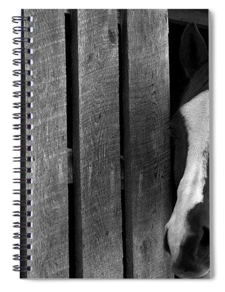 Handsome T Spiral Notebook