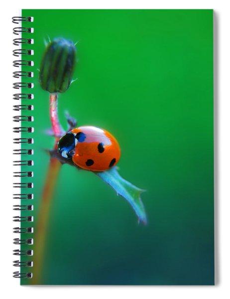Hang Spiral Notebook