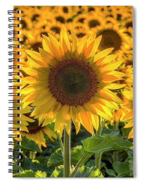 Happy Spiral Notebook
