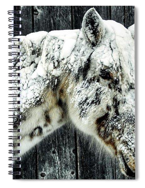 Hard Winter Spiral Notebook