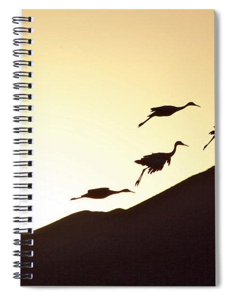 Spiral Notebook featuring the painting Harmony by Michael Lucarelli