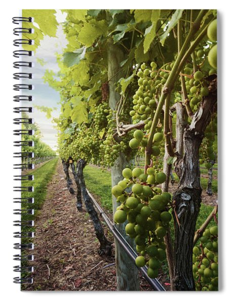 Harmony Vineyard Stony Brook New York Spiral Notebook