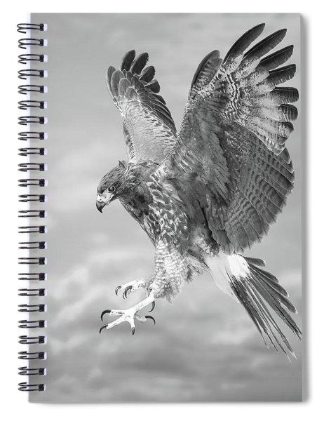 Harris's Hawk Spiral Notebook