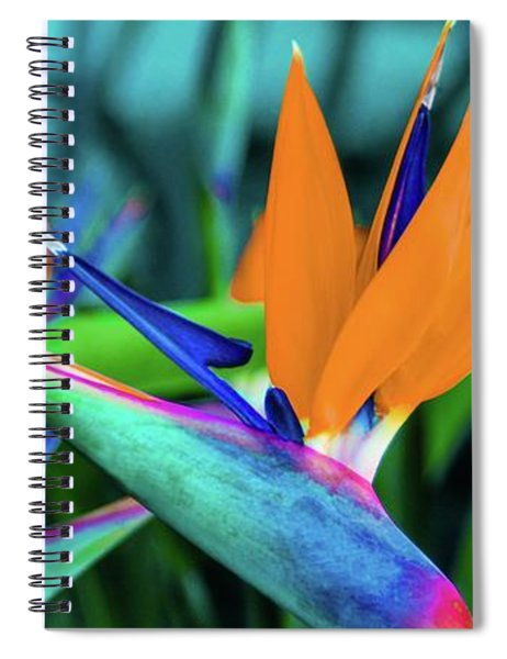 Hawaii Bird Of Paradise Flowers Spiral Notebook