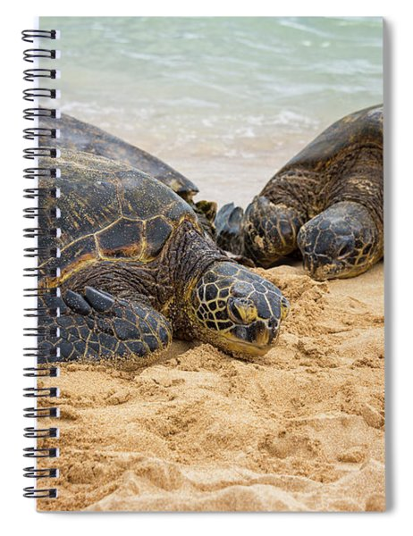 Hawaiian Green Sea Turtles 1 - Oahu Hawaii Spiral Notebook