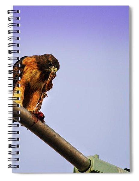 Hawk Eating Spiral Notebook