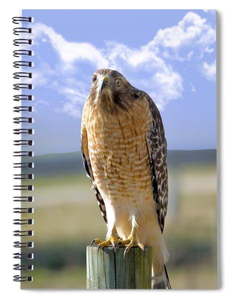 Hawk On A Fencepost Spiral Notebook