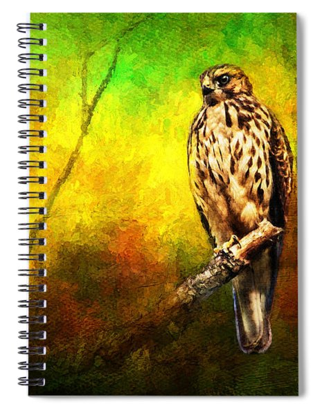 Hawk On Branch Spiral Notebook