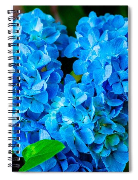 Heart Of Blue Spiral Notebook