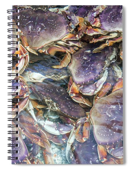 Heavenly Crabs Spiral Notebook