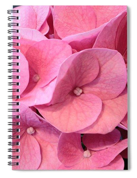 Heavenly Hydrangea Spiral Notebook