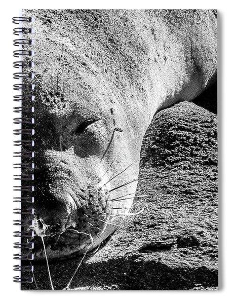 Heavy Sleeper Spiral Notebook