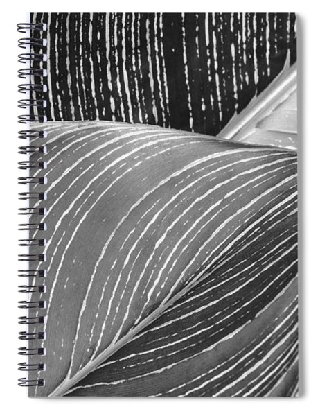 Heliconia Leaves Spiral Notebook