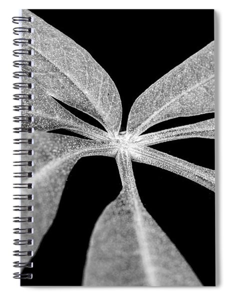 Hemp Tree Leaf Spiral Notebook