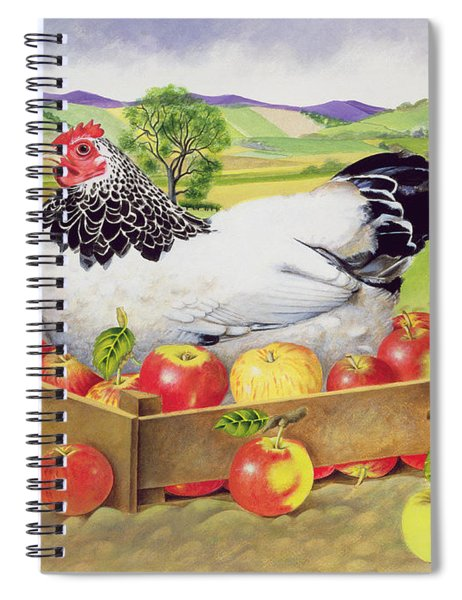 Hen In A Box Of Apples Spiral Notebook