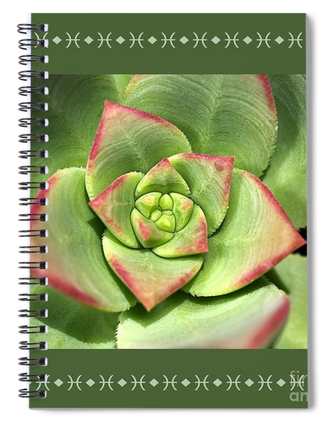 Hens And Chicks Succulent And Design Spiral Notebook