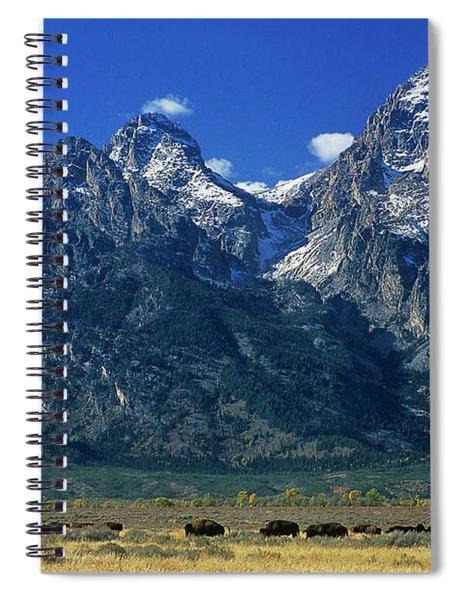 Herd Of Bison Teton Range Grand Tetons National Park Wyoming Spiral Notebook