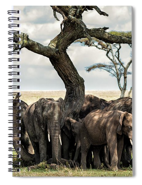 Herd Of Elephants Under A Tree In Serengeti Spiral Notebook
