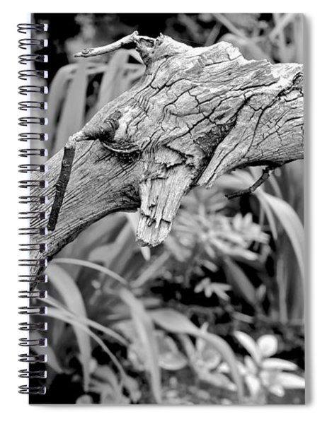 Here There Be Dragons Spiral Notebook