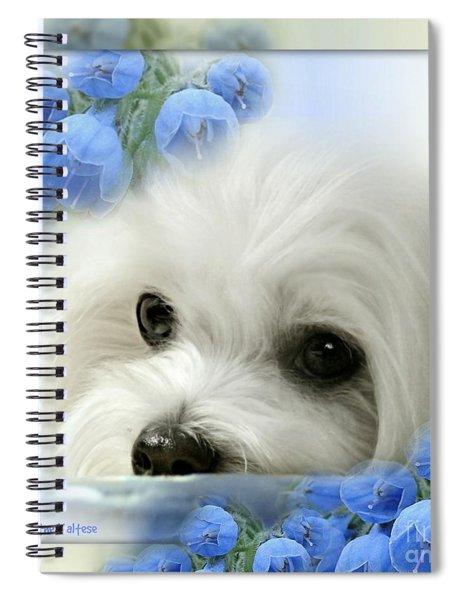 Hermes In Blue Spiral Notebook