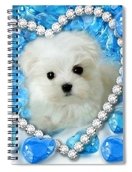 Hermes The Maltese And Blue Hearts Spiral Notebook
