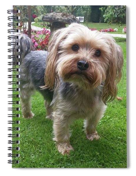 Pottering About The Garden Spiral Notebook