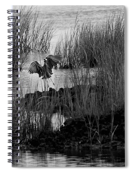 Heron And Grass In B/w Spiral Notebook