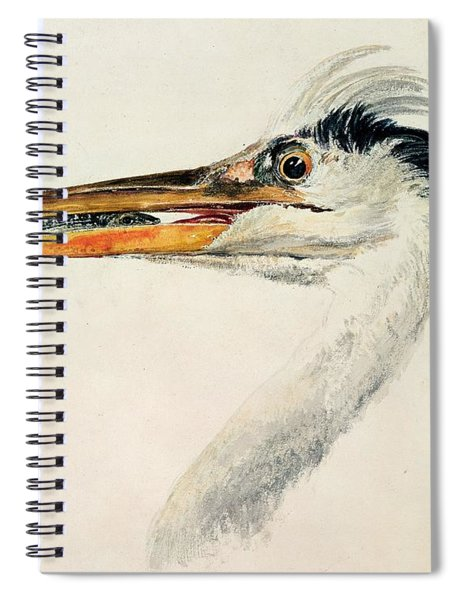 Heron With A Fish Spiral Notebook