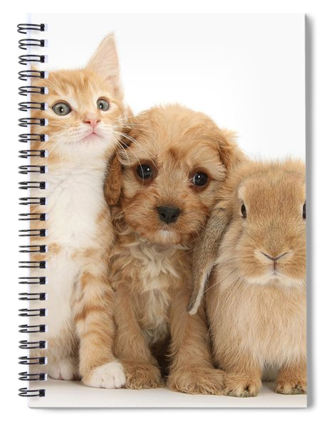 Hey, Move Over, You're Upstaging Me Spiral Notebook