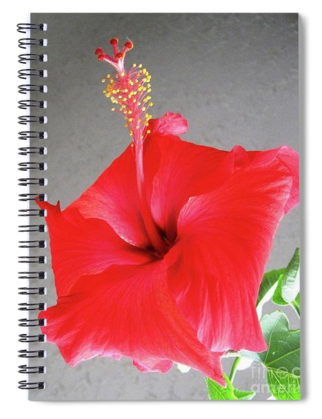 Hibiscus #2 Spiral Notebook