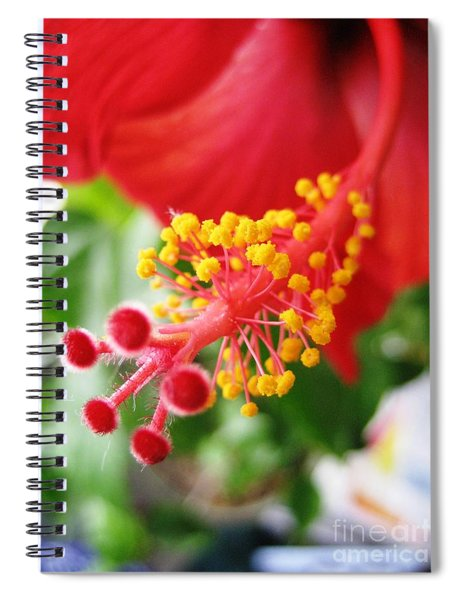 Hibiscus #3 Spiral Notebook