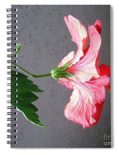 Hibiscus #4 Spiral Notebook