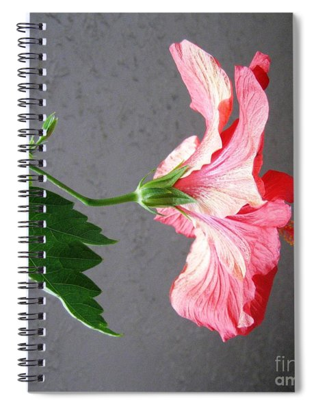 Hibiscus #4 Spiral Notebook