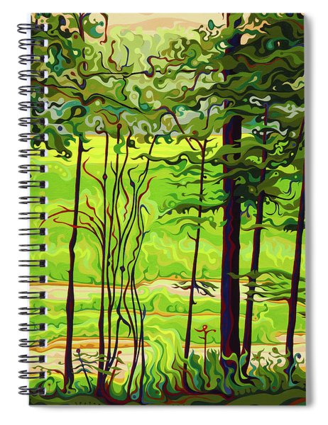 Hidden Beyond The Green Spiral Notebook