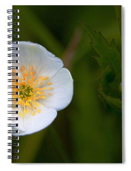 Hidden Tears Spiral Notebook