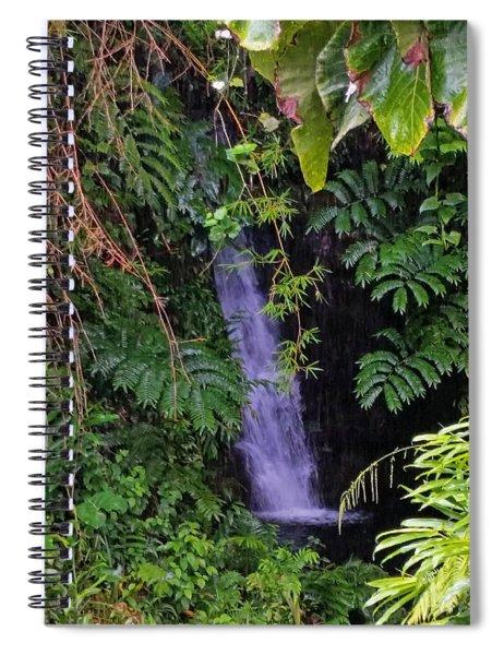 Small Hidden Waterfall  Spiral Notebook