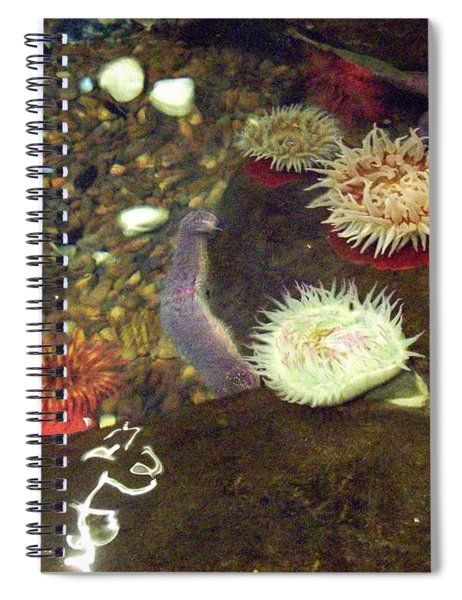 Hidden Writings Spiral Notebook