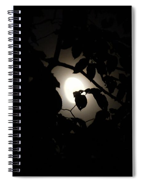 Hiding - Leaves Over Moon Spiral Notebook