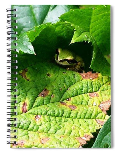 Hiding Tree Frog Spiral Notebook