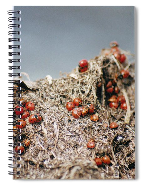 Hill Climbing Games Spiral Notebook