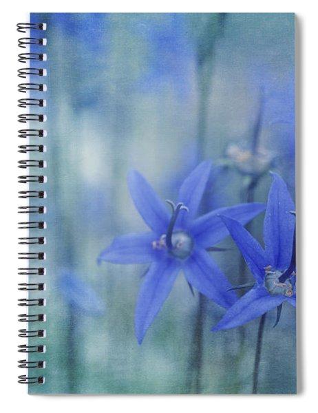 Hillside Blues Spiral Notebook