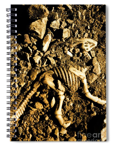 History Unearthed Spiral Notebook
