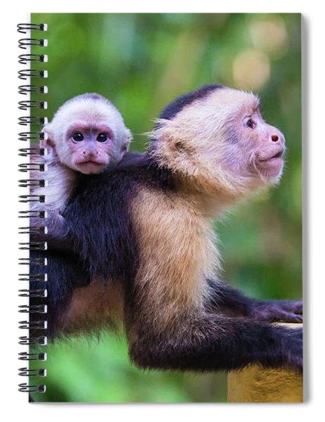 Hitching A Ride Spiral Notebook