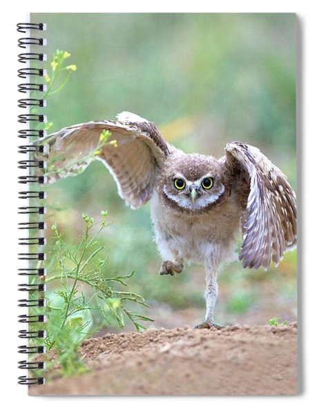 Hold On, I'm Comin' Spiral Notebook