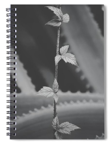 Hold On Tight Spiral Notebook